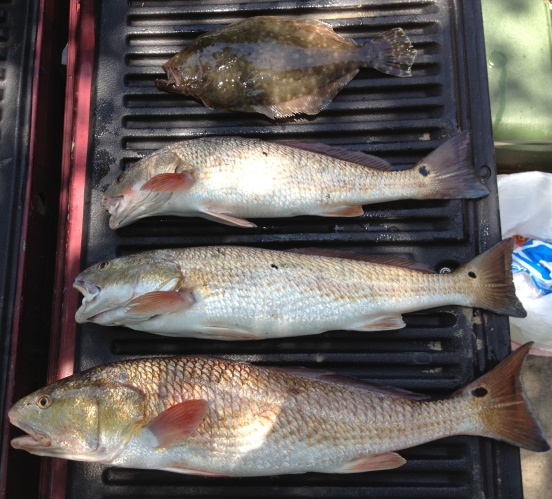 3 reds and a flounder